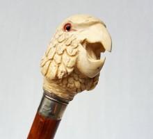 Canne perroquet ivoire (1)